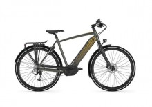 Gazelle Citizen T10+HMB 500Wh